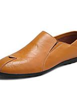 Недорогие -Муж. обувь Кожа Весна Удобная обувь Мокасины и Свитер Черный / Темно-русый