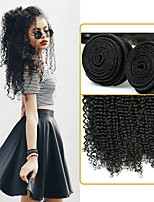 cheap -Brazilian Hair / Kinky Curly Curly One Pack Solution 4 Bundles Human Hair Weaves Soft / New Arrival / Hot Sale Natural Black Human Hair Extensions Women's