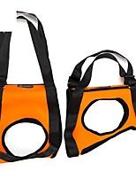 abordables -Chiens / Chats / Animaux de Compagnie Santé Marche / Veste / Chiens & Chats Couleur Pleine Tissu Oxford Orange / Rouge / Vert