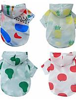 preiswerte -Hunde / Katzen Mäntel / Kapuzenshirts Hundekleidung Einfarbig / Frucht Rot / Regenbogen Stoff Kostüm Für Haustiere Weiblich Simple Style