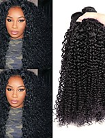 cheap -Peruvian Hair Curly Natural Color Hair Weaves / Human Hair Extensions 3 Bundles Human Hair Weaves Best Quality / Hot Sale / For Black Women Natural Black Human Hair Extensions Women's