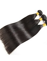 cheap -Malaysian Hair / Indian Hair Straight Unprocessed Human Hair Natural Color Hair Weaves / Human Hair Extensions 3 Bundles Human Hair Weaves Best Quality / New Arrival / Hot Sale Natural Black Human