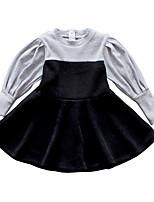 Недорогие -Дети Девочки Контрастных цветов Длинный рукав Платье