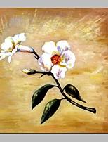 preiswerte -Hang-Ölgemälde Handgemalte - Abstrakt Blumenmuster / Botanisch Traditionell Segeltuch