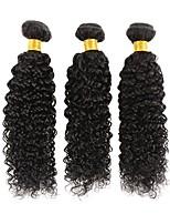 Недорогие -3 Связки Малазийские волосы Kinky Curly Натуральные волосы Человека ткет Волосы / Накладки из натуральных волос 8-28 дюймовый Естественный цвет Ткет человеческих волос