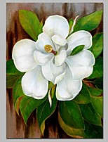 cheap -Oil Painting Hand Painted - Still Life Floral / Botanical Vintage Canvas