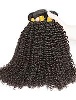 Недорогие -4 Связки Бразильские волосы Кудрявый Натуральные волосы Человека ткет Волосы / Удлинитель 8-28 дюймовый Ткет человеческих волос Машинное плетение Новое поступление / 100% девственница / вьющийся