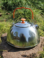 cheap -Stainless steel Heatproof 1pc Teapot