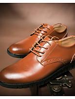 Недорогие -Муж. обувь Кожа Весна Удобная обувь Туфли на шнуровке Черный / Темно-русый