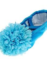 abordables -Fille Chaussures de Ballet Tissu Plate Fleur Talon Plat Chaussures de danse Fuchsia / Vert / Bleu / Intérieur / Entraînement