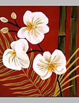 Недорогие -Hang-роспись маслом Ручная роспись - Абстракция Цветочные мотивы / ботанический Современный холст
