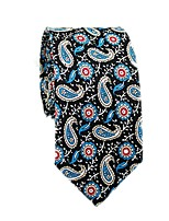 cheap -Men's Party / Basic Cotton / Polyester Necktie - Color Block / Paisley / All Seasons