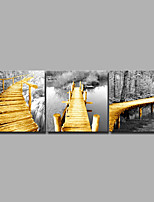 cheap -Print Rolled Canvas Prints / Stretched Canvas Prints - Landscape / Modern Modern