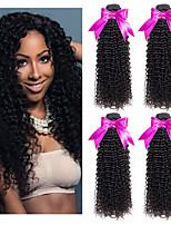 Недорогие -4 Связки Перуанские волосы Кудрявый Натуральные волосы Человека ткет Волосы / Удлинитель 8-28 дюймовый Ткет человеческих волос Машинное плетение Лучшее качество / Новое поступление / 100% девственница