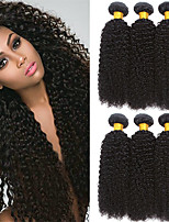 cheap -6 Bundles Indian Hair Curly Human Hair Natural Color Hair Weaves / Extension / Bundle Hair 8-28 inch Human Hair Weaves Machine Made / Capless Best Quality / Hot Sale / For Black Women Black Natural