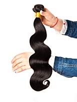 Недорогие -6 Связок Бразильские волосы Волнистый Естественные кудри Натуральные волосы Необработанные натуральные волосы Головные уборы Человека ткет Волосы Уход за волосами 8-28 дюймовый / Черный