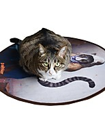 cheap -Plush Toy / Bed / Other Pet Friendly / Cartoon Toy / Fragrance Free Fabric For Cats
