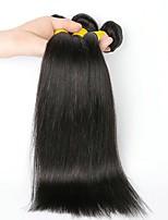 abordables -Cheveux Indiens Droit Tissages de cheveux humains / Extensions Naturelles 3 offres groupées 8-28 pouce Tissages de cheveux humains Sans bonnet Design Tendance / Nouvelle arrivee Noir Naturel