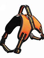 abordables -Perros / Gatos / Mascotas Correas Portátil / Mini / Entrenador Un Color Tejido Oxford Negro / Naranja / Verde