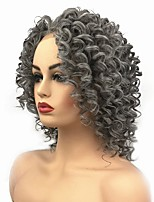 cheap -Synthetic Lace Front Wig Curly Middle Part Synthetic Hair African American Wig / For Black Women Dark Gray Wig Women's Mid Length Lace Front