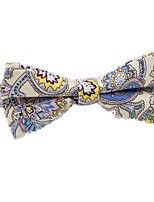 cheap -Men's Party / Basic Cotton / Polyester Bow Tie - Color Block / Paisley Bow / All Seasons