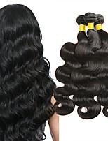 Недорогие -4 Связки Бразильские волосы Волнистый Натуральные волосы Человека ткет Волосы / Накладки из натуральных волос 8-28 дюймовый Естественный цвет Ткет человеческих волос Без шапочки-основы