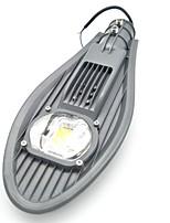 Недорогие -1шт 30 W LED прожекторы / Светодиодный уличный фонарь Новый дизайн / Водонепроницаемый / Декоративная Тёплый белый / Холодный белый 85-265 V Уличное освещение / двор / Сад