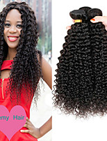 cheap -Malaysian Hair Curly One Pack Solution 3 Bundles 8-28 inch Human Hair Weaves Machine Made Life / Classic / Best Quality Natural Black Human Hair Extensions Women's