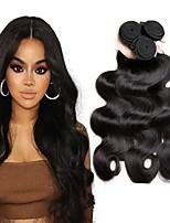 Недорогие -3 Связки Перуанские волосы Волнистый Натуральные волосы Человека ткет Волосы / Удлинитель / Пучок волос 8-28 дюймовый Естественный цвет Ткет человеческих волос Машинное плетение