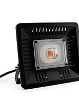 Недорогие -1шт 50 W 3500-5000 lm G4 Растущая лампа 1 Светодиодные бусины COB Новый дизайн / Полного спектра / Водонепроницаемый 220-240 V / 110-130 V
