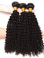Недорогие -3 Связки Индийские волосы Kinky Curly Необработанные / Натуральные волосы Человека ткет Волосы / Сувениры для чаепития / Уход за волосами 8-28 дюймовый Ткет человеческих волос