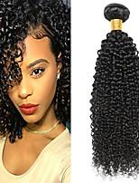 Недорогие -6 Связок Индийские волосы Kinky Curly Необработанные / Натуральные волосы Человека ткет Волосы / One Pack Solution / Накладки из натуральных волос 8-28 дюймовый Ткет человеческих волос