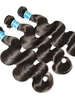 Недорогие -3 Связки Бразильские волосы / Вьетнамские волосы Естественные кудри Не подвергавшиеся окрашиванию Человека ткет Волосы 8-28 дюймовый Ткет человеческих волос Машинное плетение Лучшее качество / 100