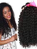 billige -4 pakker Brasiliansk hår Kinky Curly Ubehandlet / Menneskehår Menneskehår, Bølget / Én Pack Solution / Hårforlængelse af menneskehår 8-28 inch Menneskehår Vævninger Nyfødt / Blød / Hot Salg Naturlig
