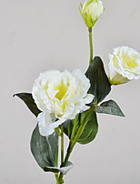 cheap -Artificial Flowers 1 Branch Classic Modern / Contemporary / Simple Style Eternal Flower Tabletop Flower