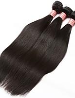 Недорогие -3 Связки Бразильские волосы Естественный прямой Натуральные волосы One Pack Solution / Плетение 10-28 дюймовый Ткет человеческих волос Расширения человеческих волос Все