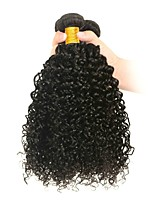 cheap -6 Bundles Indian Hair Kinky Curly Unprocessed Human Hair / Human Hair Cosplay Suits / Natural Color Hair Weaves / Tea Party Favors 8-28 inch Human Hair Weaves Valentine / Soft / Thick Natural Color