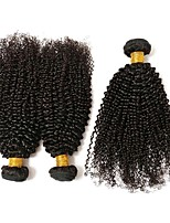 Недорогие -3 Связки Бразильские волосы Kinky Curly Натуральные волосы One Pack Solution / Накладки из натуральных волос 8-28 дюймовый Ткет человеческих волос Удлинитель / Лучшее качество / Cool Естественный цвет