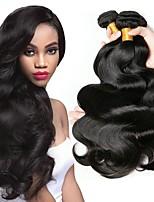 Недорогие -6 Связок Бразильские волосы Естественные кудри Натуральные волосы One Pack Solution / Накладки из натуральных волос 8-28 дюймовый Ткет человеческих волос Удлинитель / Лучшее качество Естественный цвет
