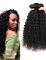 Недорогие -4 Связки Перуанские волосы Kinky Curly Натуральные волосы Человека ткет Волосы / One Pack Solution / Накладки из натуральных волос 8-28 дюймовый Естественный цвет Ткет человеческих волос