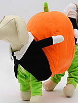 cheap -Dogs / Cats Holiday Decorations Dog Clothes Animal Orange Cotton Costume For Pets Male / Female Halloween