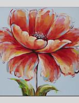 economico -Hang-Dipinto ad olio Dipinta a mano - Floreale / Botanical Modern Tela