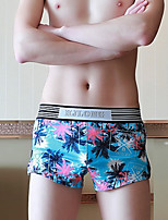 cheap -Men's Boxers Underwear / Briefs Underwear Floral / Color Block / Letter Mid Waist