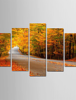 Недорогие -С картинкой Роликовые холсты - Времена года / Фото Modern