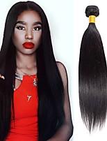 Недорогие -4 Связки Перуанские волосы Прямой Необработанные / Натуральные волосы Подарки / Косплей Костюмы / Человека ткет Волосы 8-28 дюймовый Естественный цвет Ткет человеческих волос