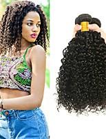 Недорогие -4 Связки Бразильские волосы Kinky Curly Необработанные / Натуральные волосы Человека ткет Волосы / One Pack Solution / Накладки из натуральных волос 8-28 дюймовый Ткет человеческих волос