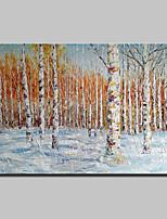 economico -Hang-Dipinto ad olio Dipinta a mano - Paesaggi / Floreale / Botanical Classico / Modern Tela