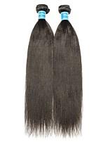 Недорогие -2 Связки Бразильские волосы / Малазийские волосы Естественные прямые Не подвергавшиеся окрашиванию Человека ткет Волосы 8-28 дюймовый Ткет человеческих волос Машинное плетение Лучшее качество / 100