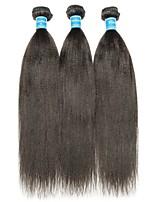 Недорогие -3 Связки Бразильские волосы / Перуанские волосы Естественные прямые Не подвергавшиеся окрашиванию Человека ткет Волосы / Плетение 8-28 дюймовый Ткет человеческих волос Машинное плетение
