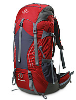 cheap -60 L Rucksack - Rain-Proof, Breathability Outdoor Hiking, Camping, Travel Red, Green, Blue